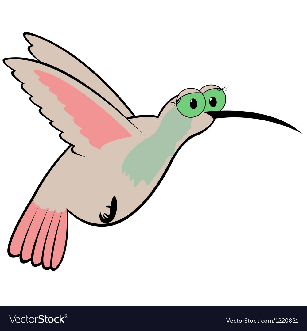Hummingbird cartoon vector | Price: 1 Credit (USD $1)
