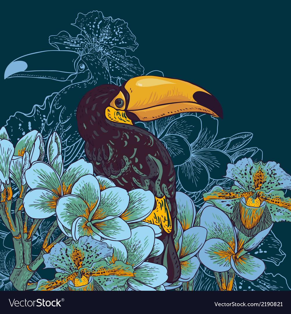 Tropical background with exotic flowers toucan vector | Price: 1 Credit (USD $1)