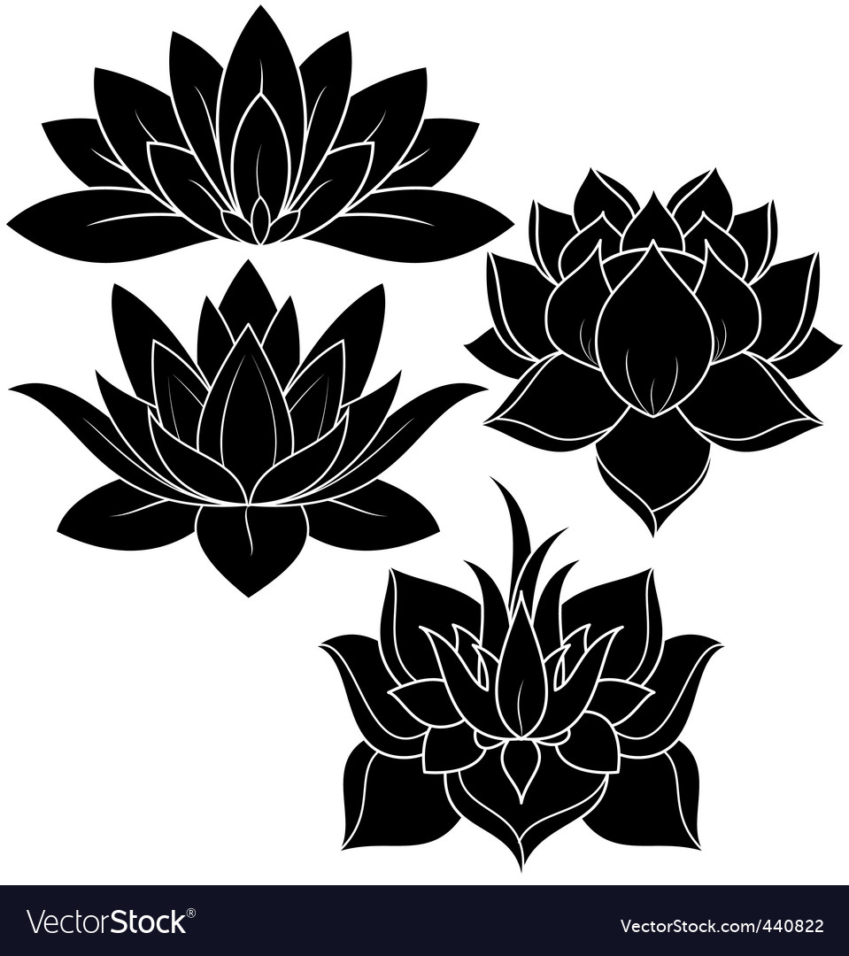 Lotus set vector | Price: 1 Credit (USD $1)