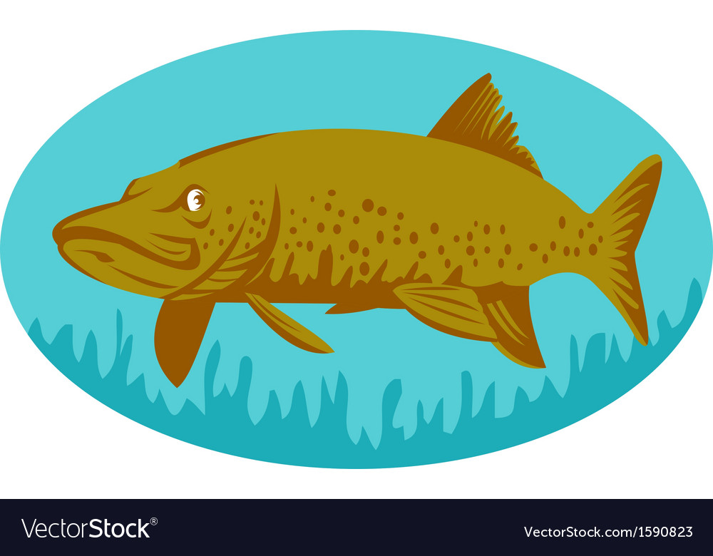 Pike or muskie fish swimming vector | Price: 1 Credit (USD $1)