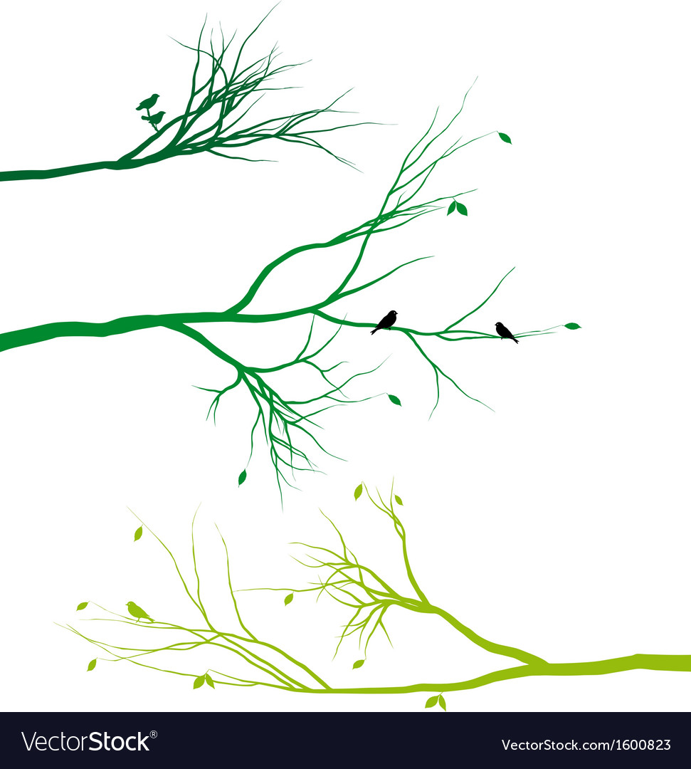 Tree branches with birds and leaves vector | Price: 1 Credit (USD $1)