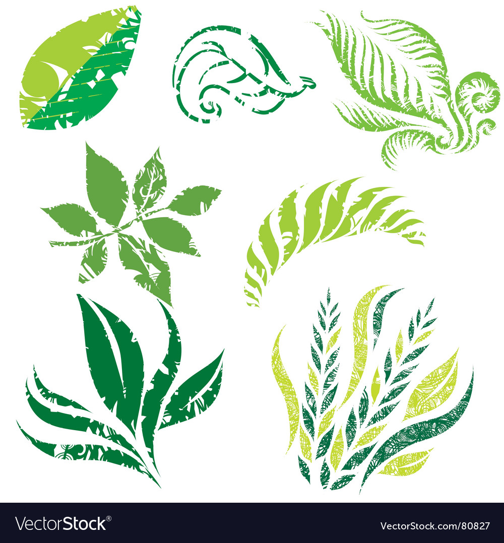 Plant design elemets vector | Price: 1 Credit (USD $1)