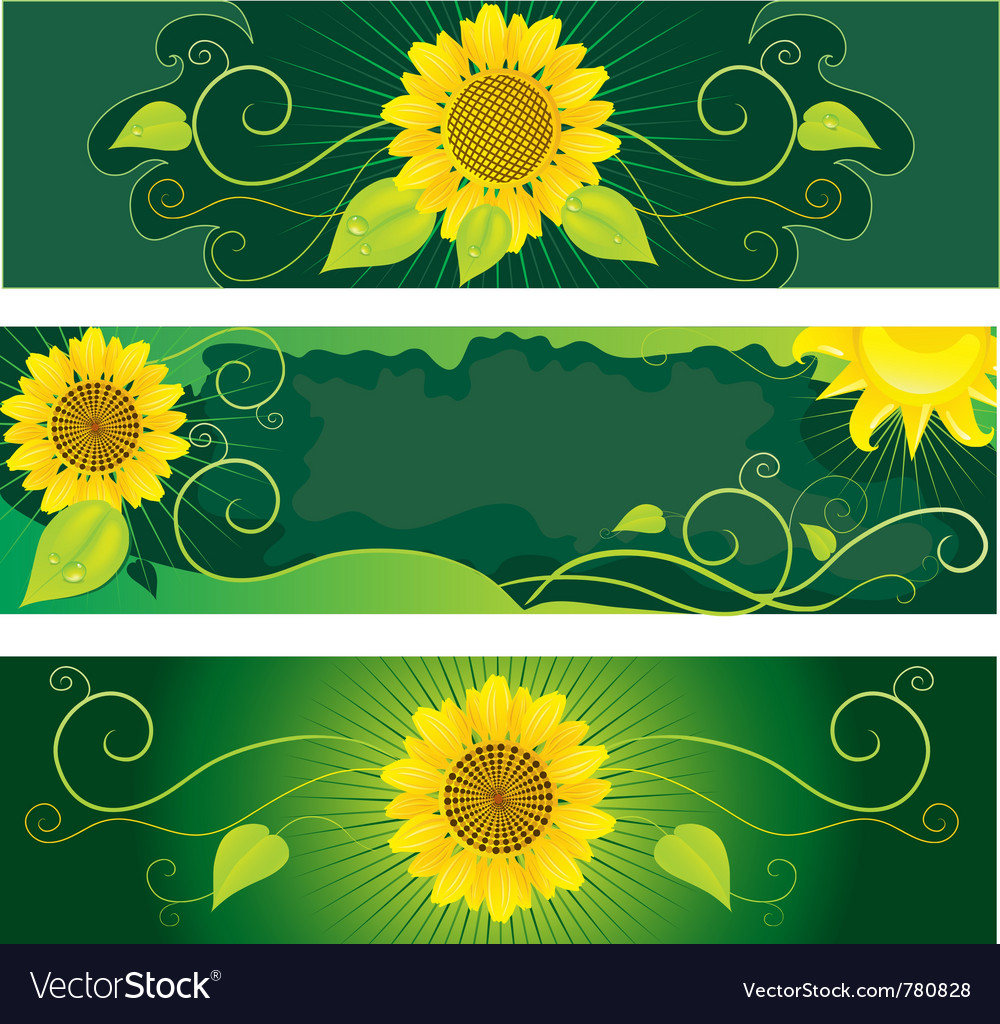 Set of backgrounds with sunflowers vector | Price: 1 Credit (USD $1)