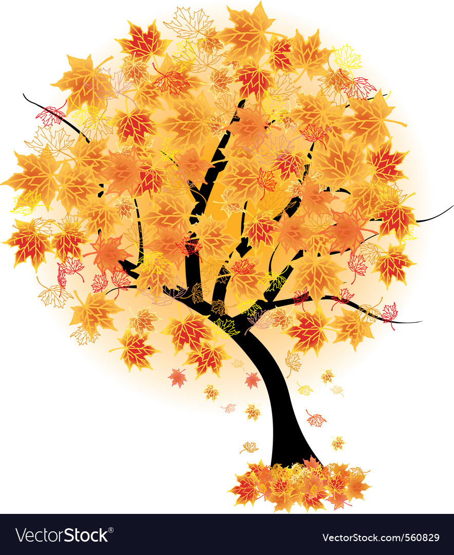 Autumn maple tree vector | Price: 1 Credit (USD $1)
