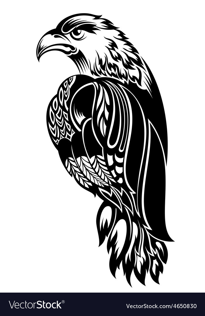 Detailed decorative hand drawn eagle vector | Price: 1 Credit (USD $1)