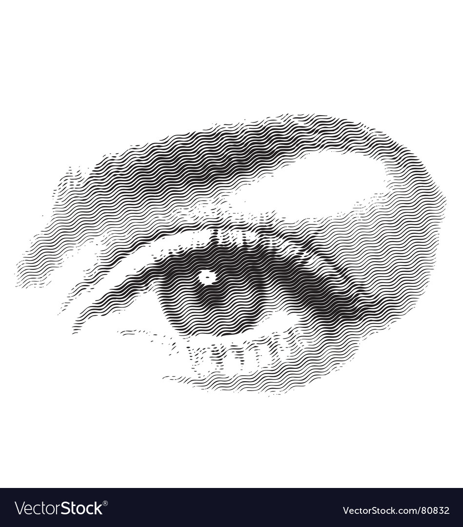 Eyes vector   Price: 1 Credit (USD $1)