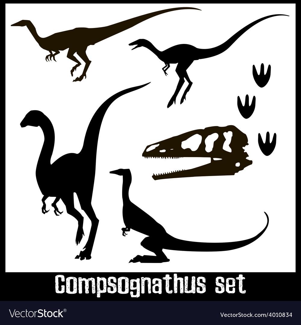 Compsognathus set vector