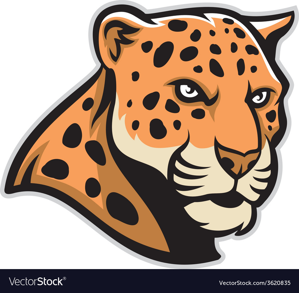 Jaguar head mascot vector | Price: 3 Credit (USD $3)