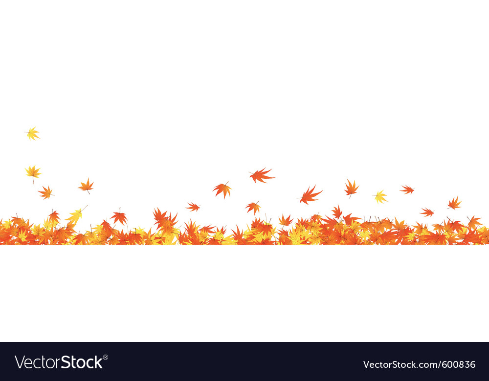 Autumn maple leaves vector | Price: 1 Credit (USD $1)