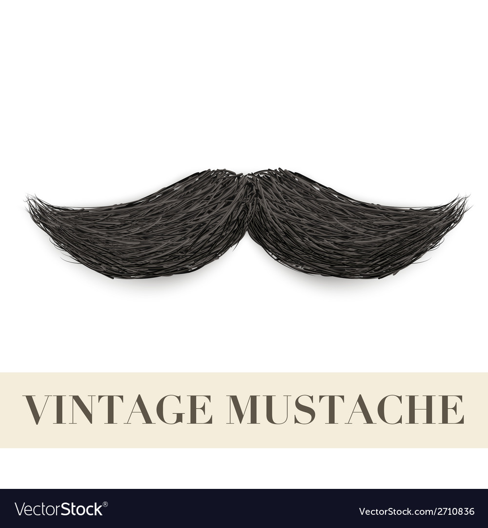 Realistic black vintage curly mustache vector | Price: 1 Credit (USD $1)