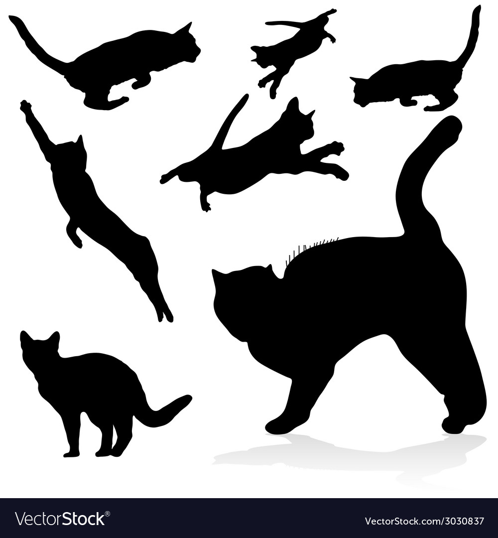 Cat black silhouettes vector | Price: 1 Credit (USD $1)