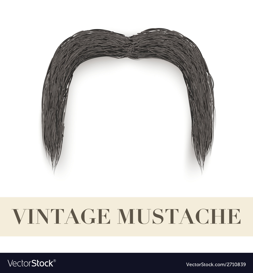 Realistic black vintage drooping mustache vector | Price: 1 Credit (USD $1)