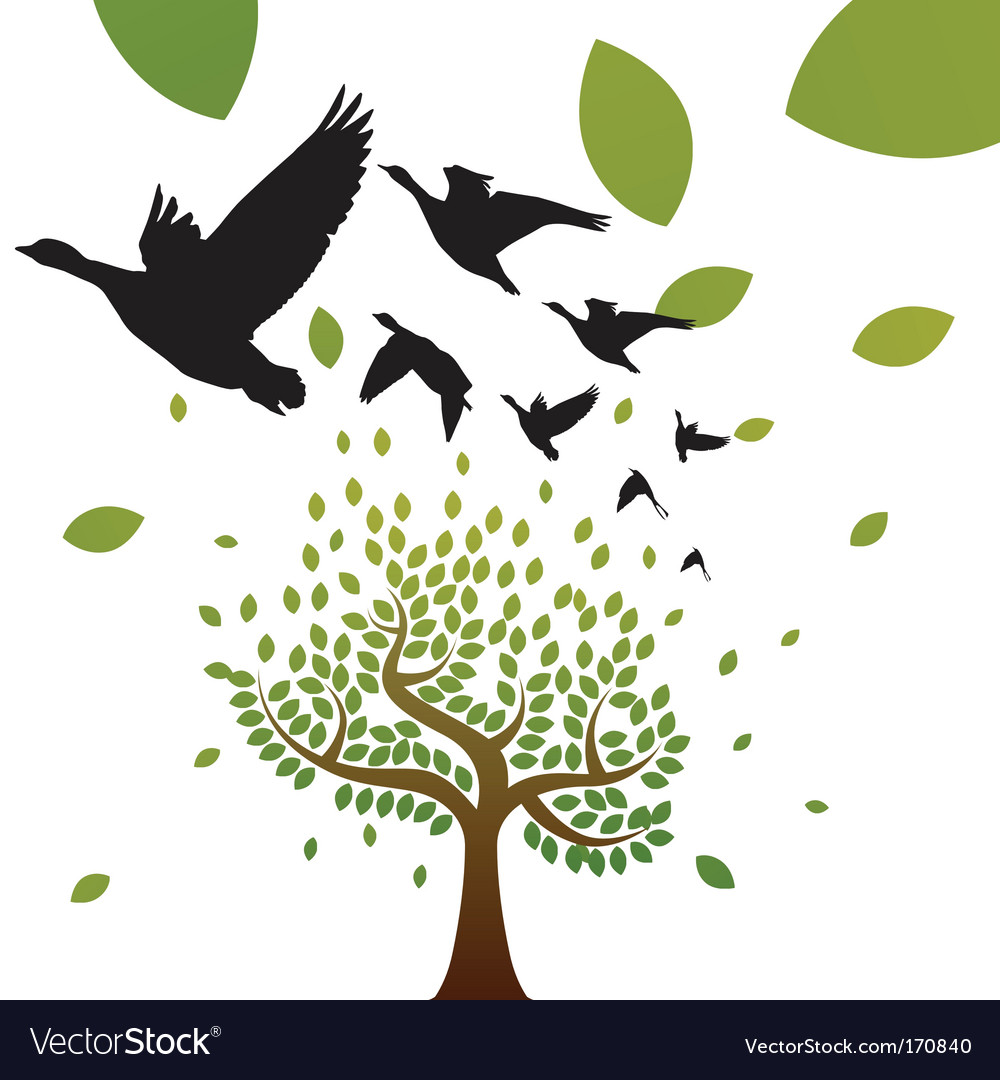 Birds and tree vector | Price: 1 Credit (USD $1)