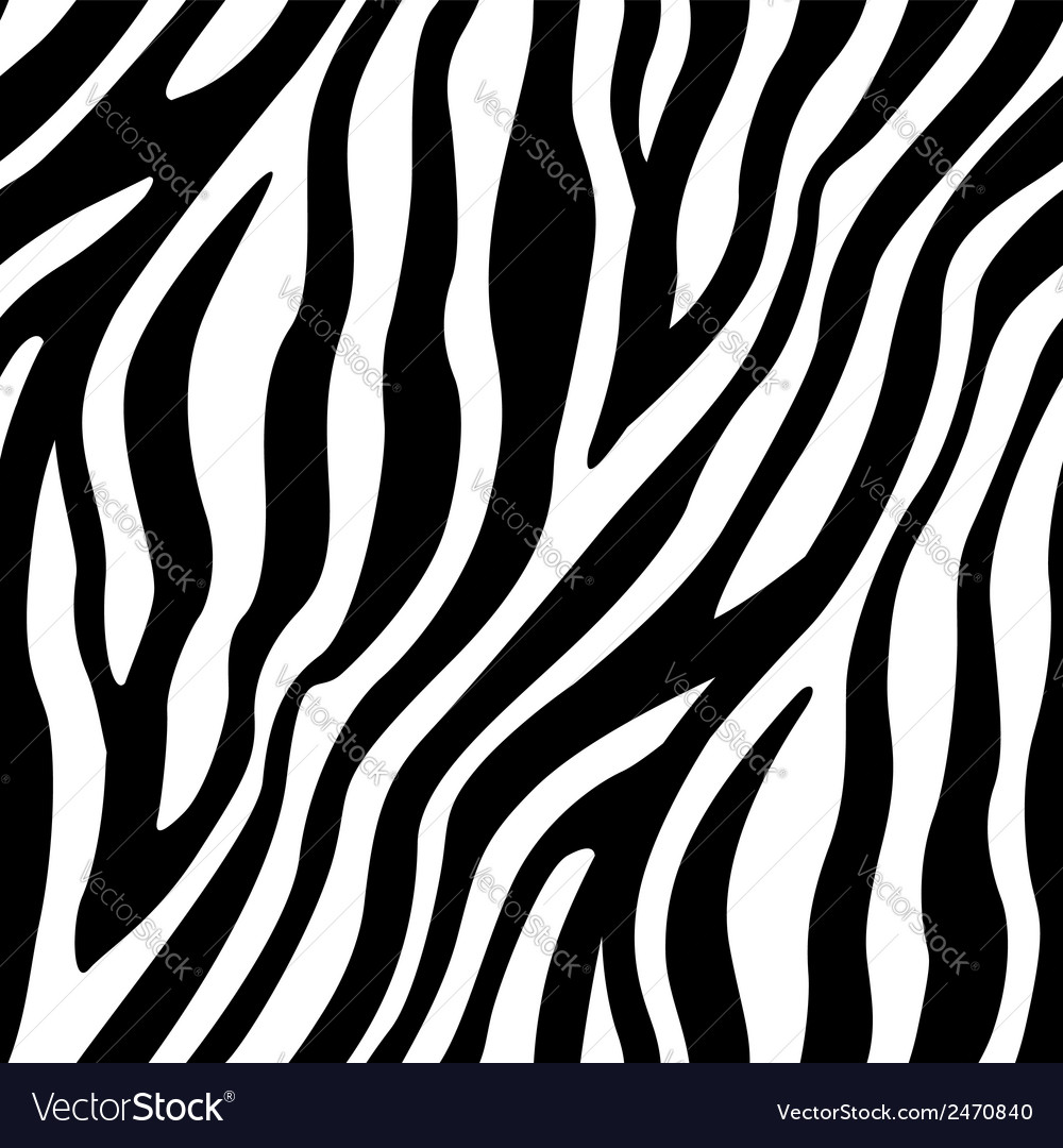 Zebra stripes seamless pattern vector | Price: 1 Credit (USD $1)