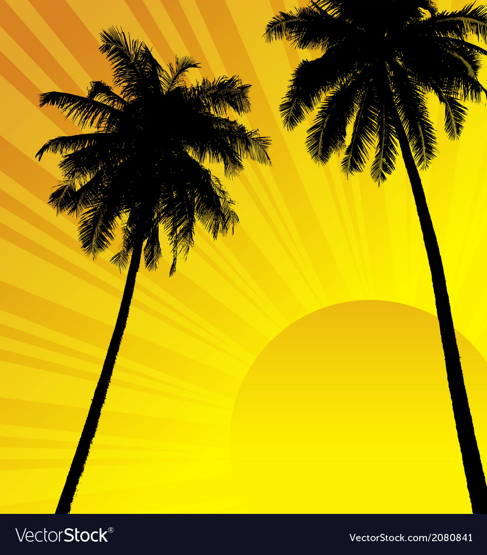 Coconut trees vector | Price: 1 Credit (USD $1)