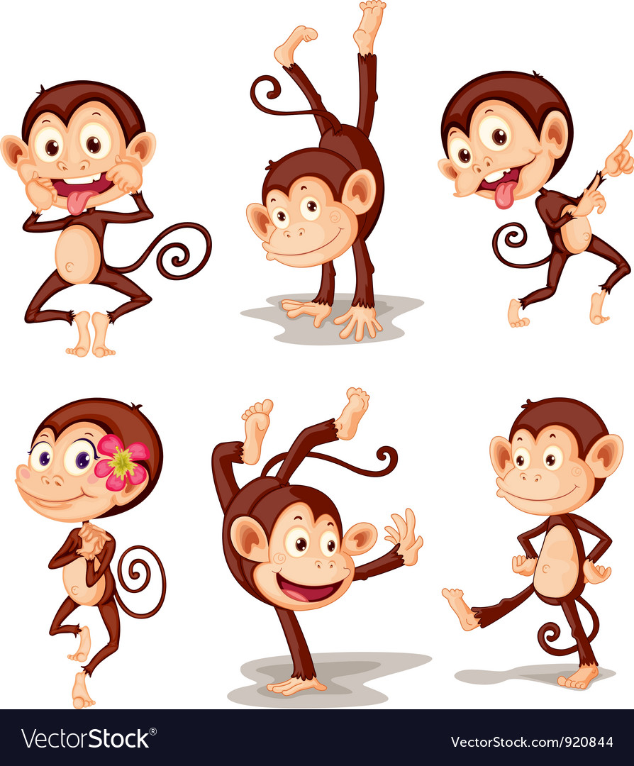 Monkey series vector | Price: 5 Credit (USD $5)
