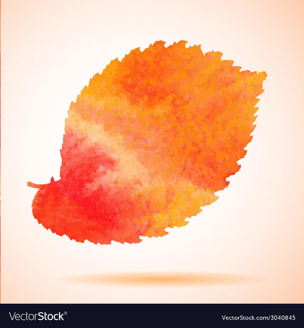 Orange watercolor painted elm tree leaf vector | Price: 1 Credit (USD $1)
