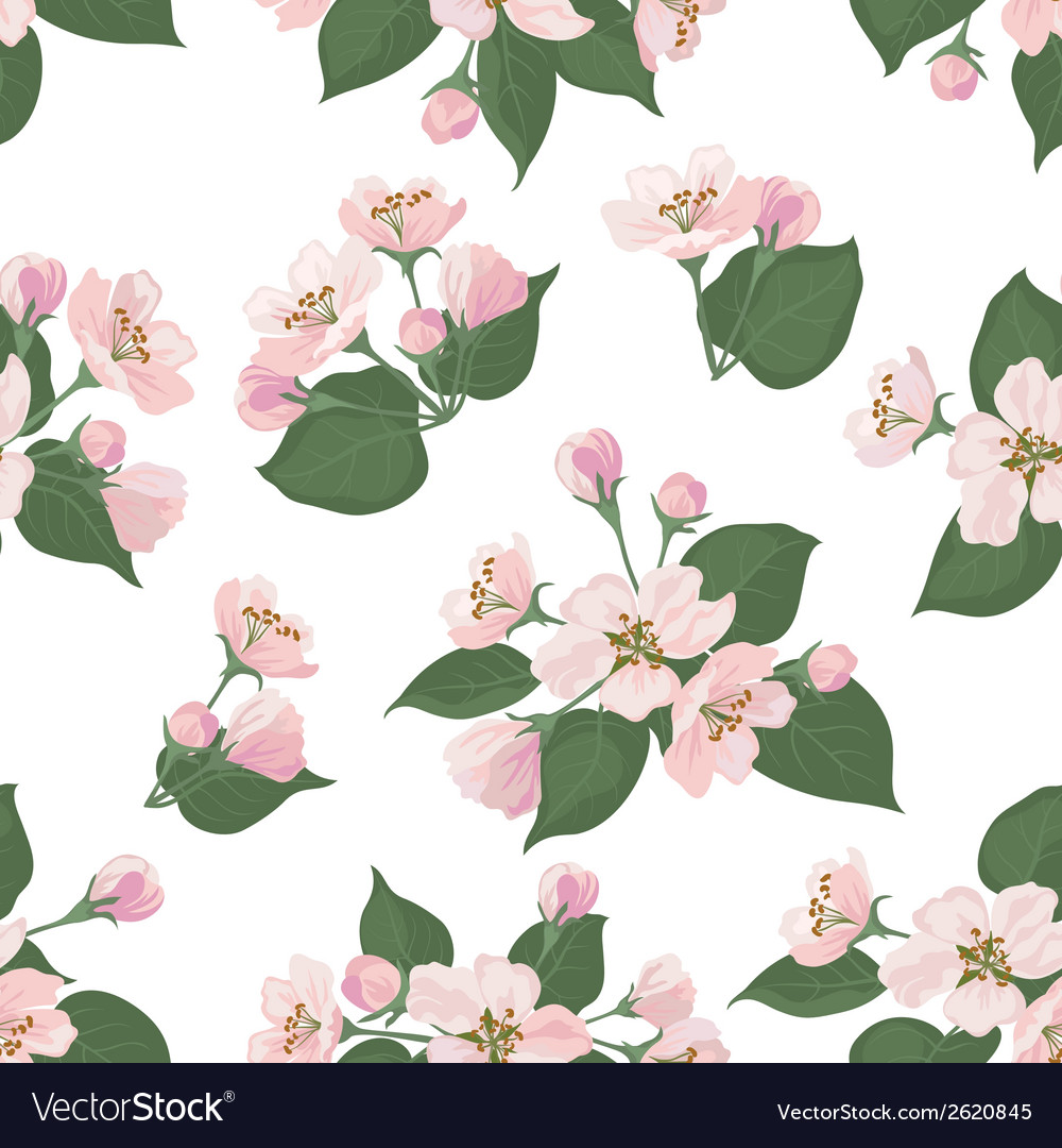 Seamless floral pattern apple tree flowers vector | Price: 1 Credit (USD $1)