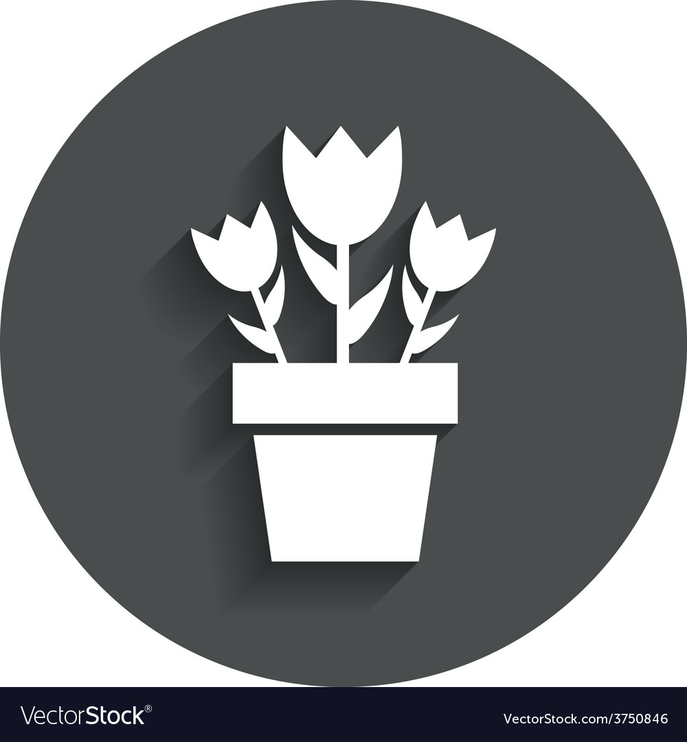 Flowers in pot sign icon bouquet of roses vector
