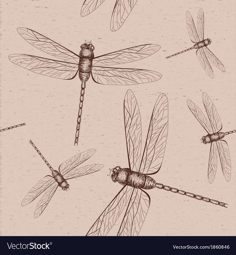 Seamless dragonfly sketch vector | Price: 1 Credit (USD $1)