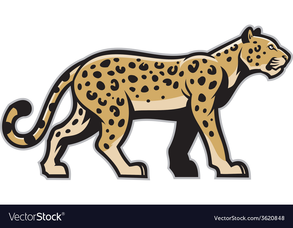 Majestic leopard mascot vector | Price: 3 Credit (USD $3)