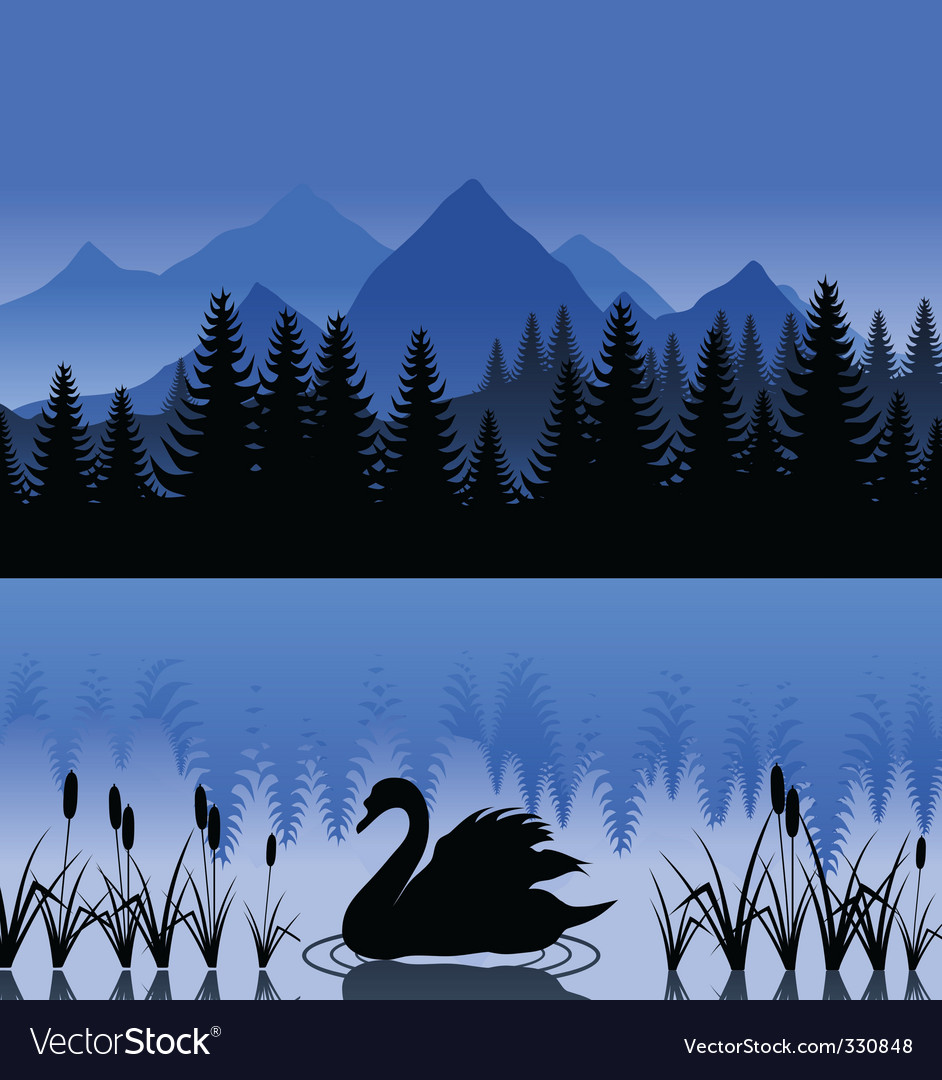 Swan on lake vector | Price: 1 Credit (USD $1)