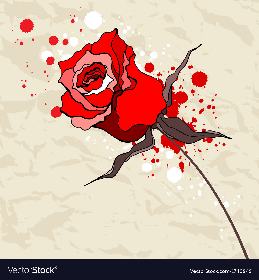 Grunge red rose on crumpled paper background vector | Price: 1 Credit (USD $1)
