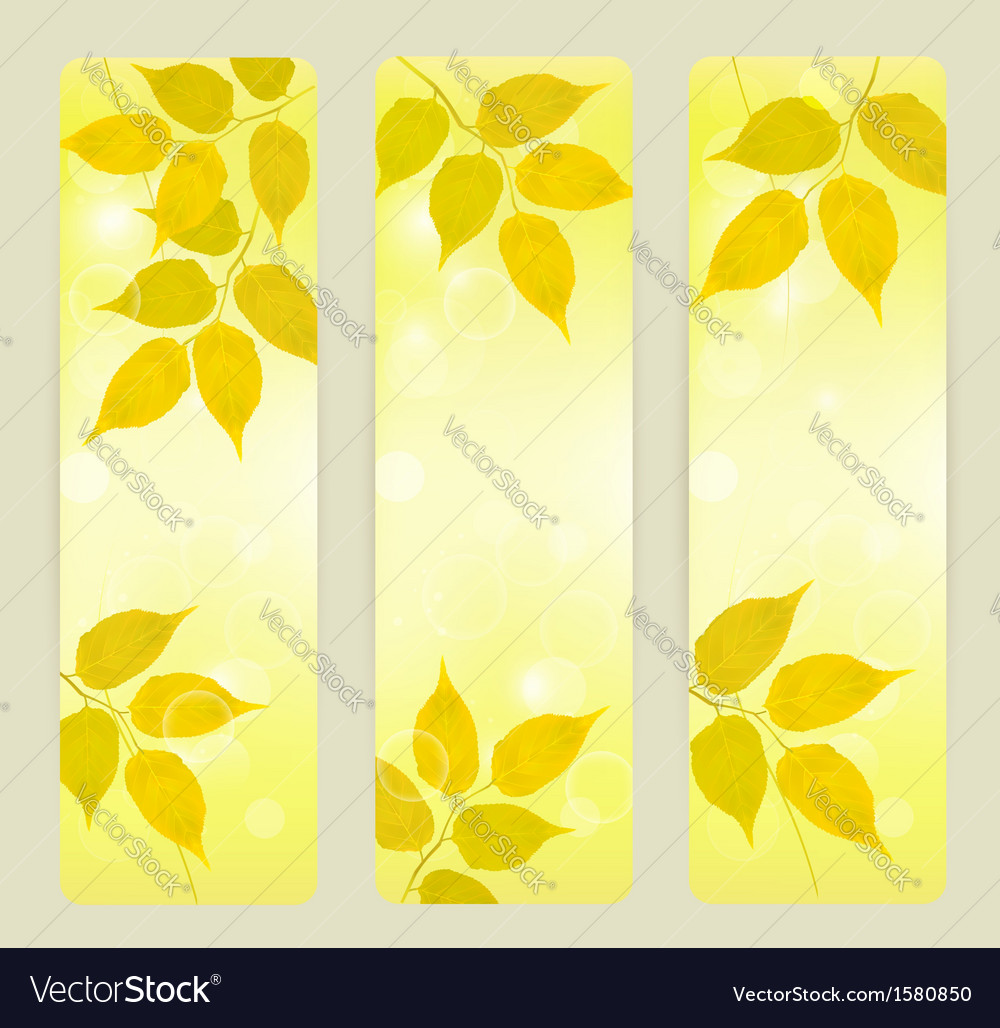Three autumn banners with yellow leaves vector | Price: 1 Credit (USD $1)
