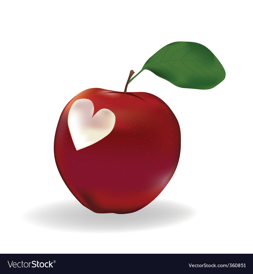Apple with a heart vector | Price: 1 Credit (USD $1)