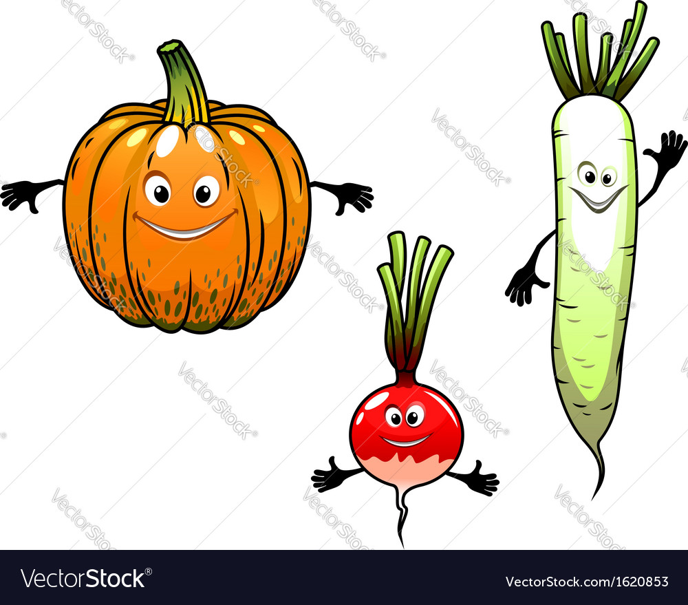 Radish turnip and pumpkin vegetables vector | Price: 1 Credit (USD $1)