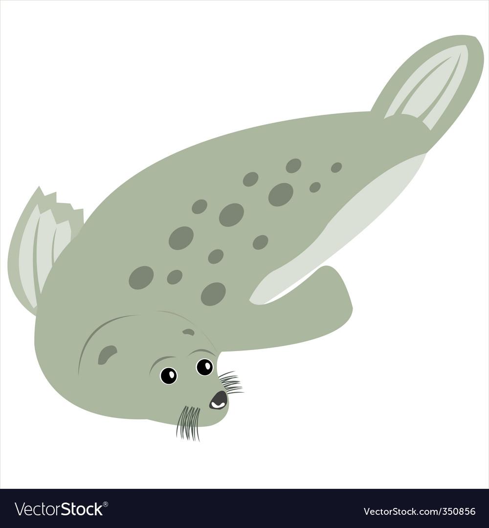 Sea animal seal vector   Price: 1 Credit (USD $1)