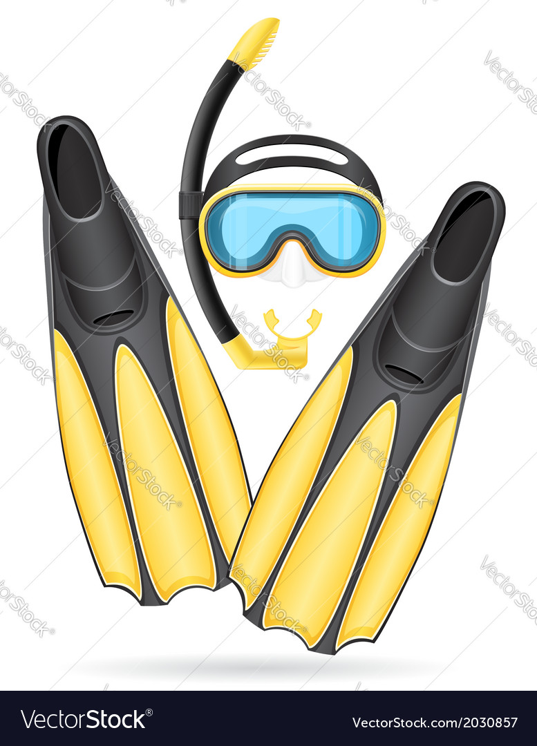 Mask tube and flippers for diving vector   Price: 1 Credit (USD $1)