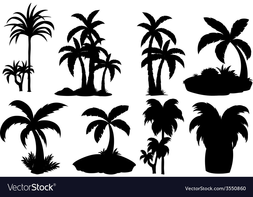 Silhouette palm trees vector | Price: 1 Credit (USD $1)