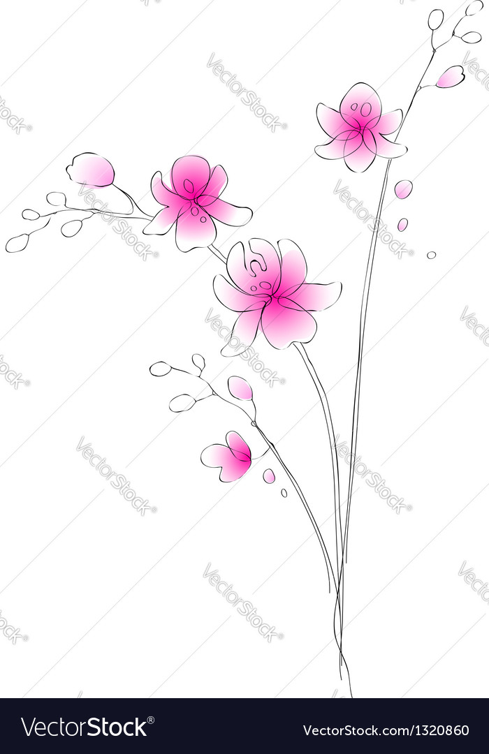 Watercolor orchid sketch vector | Price: 1 Credit (USD $1)