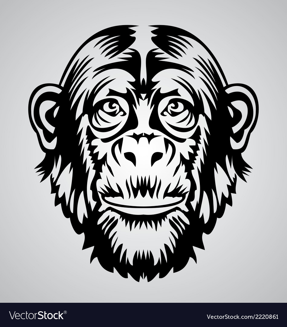 Monkey face vector | Price: 1 Credit (USD $1)