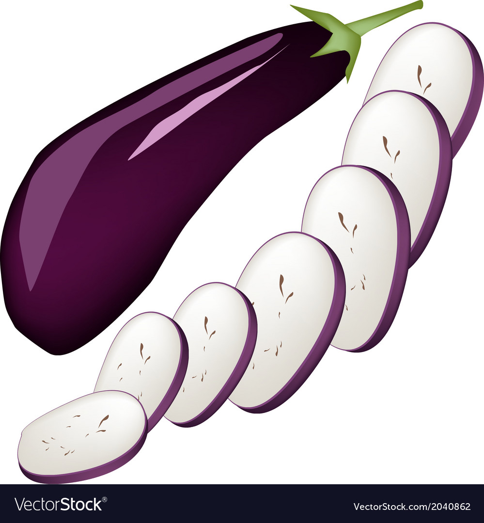Fresh purple eggplant on a white background vector | Price: 1 Credit (USD $1)