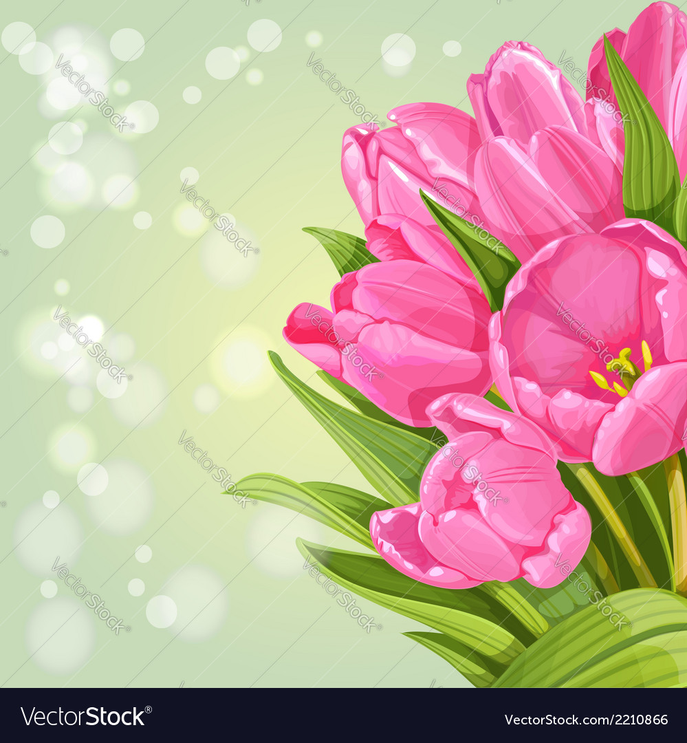 Background of pink tulips vector | Price: 1 Credit (USD $1)