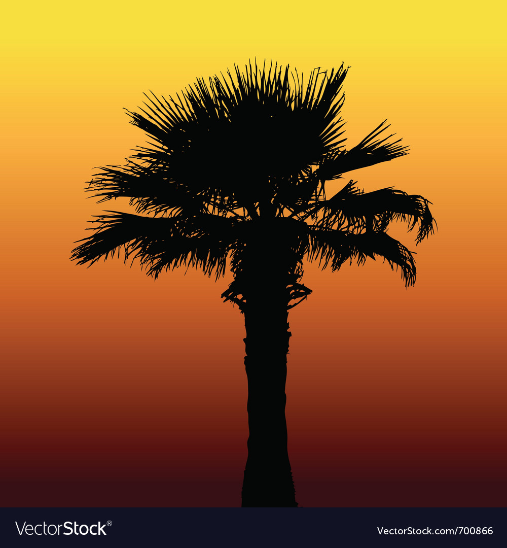 Desert palm silhouette vector | Price: 1 Credit (USD $1)