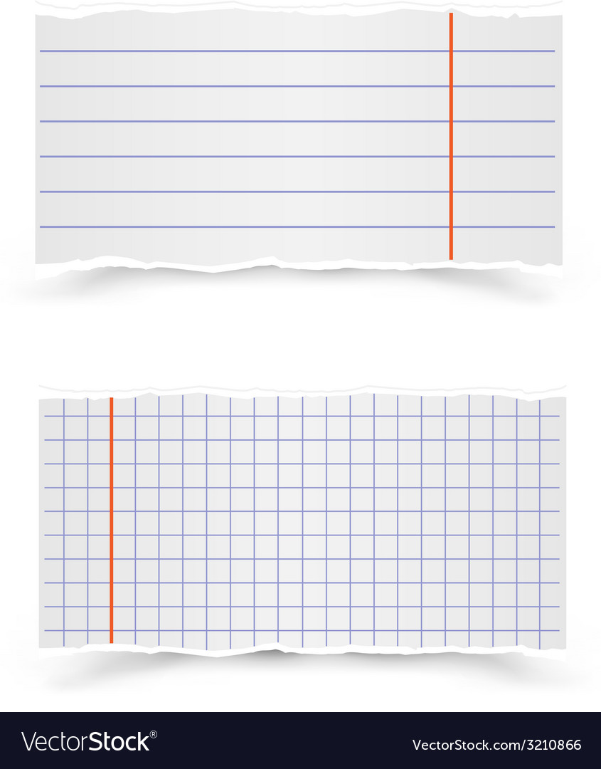 Sheets of school notebooks vector | Price: 1 Credit (USD $1)