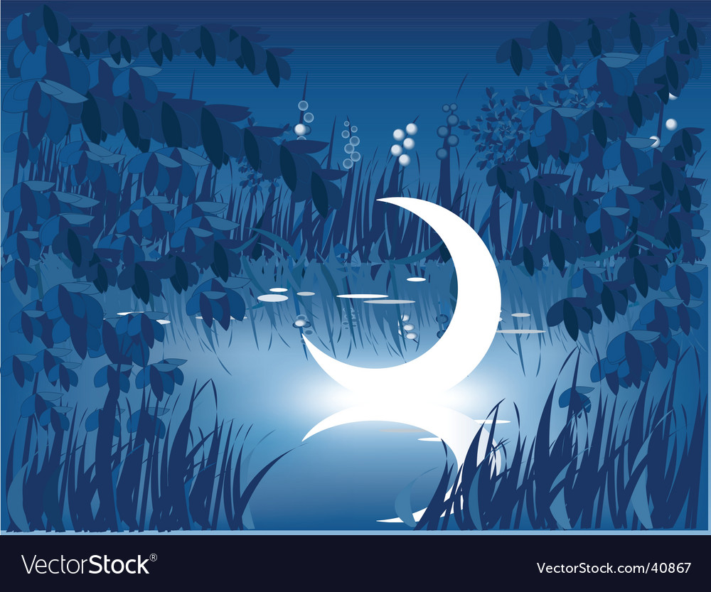 Moon in pond vector | Price: 1 Credit (USD $1)