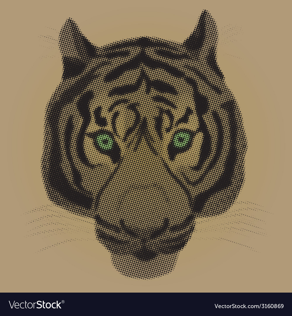 An of a tiger vector | Price: 1 Credit (USD $1)