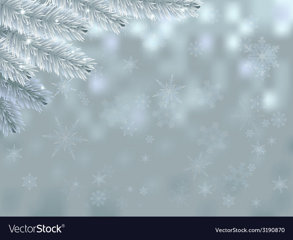 Snow background with fir branch and sparkles vector | Price: 1 Credit (USD $1)