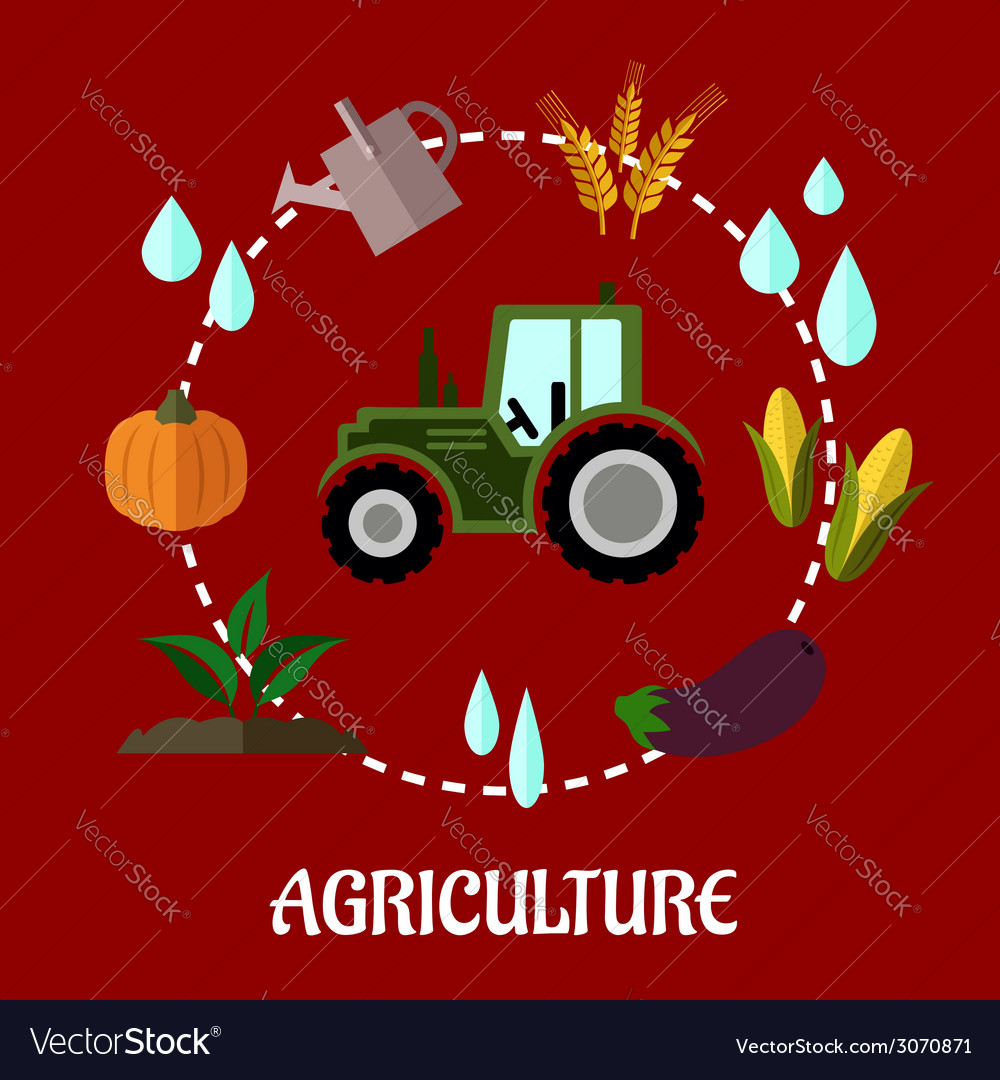 Agriculture flat infographic concept vector | Price: 1 Credit (USD $1)