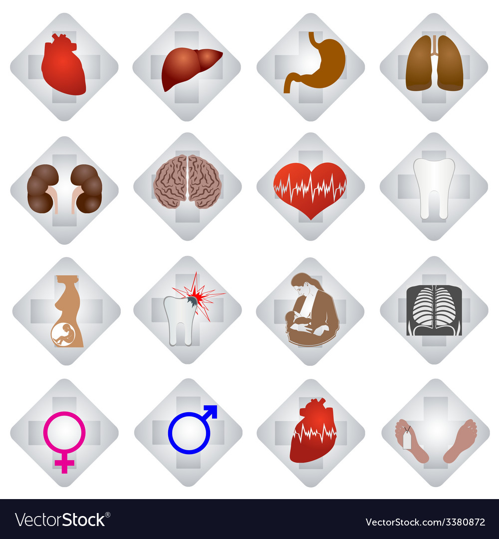 Set of medical icons-3 vector | Price: 1 Credit (USD $1)