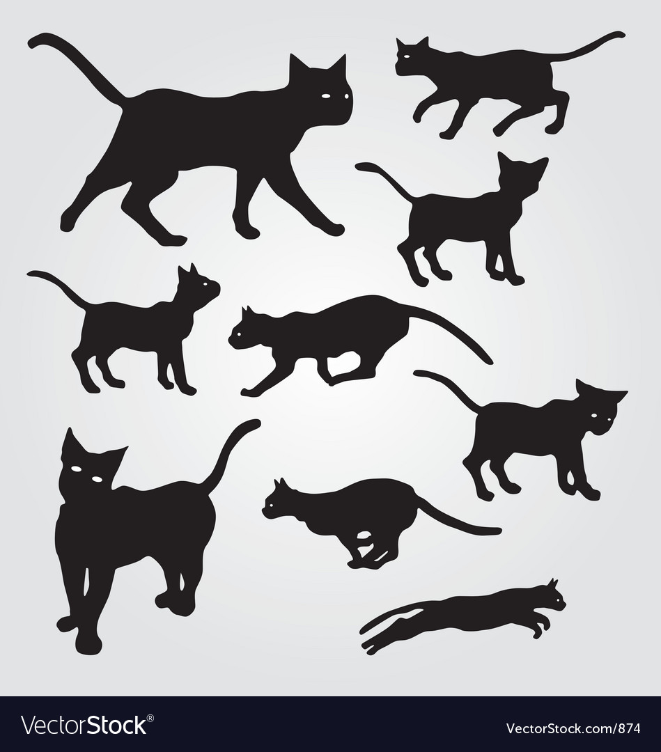 Domestic cats vector | Price: 1 Credit (USD $1)