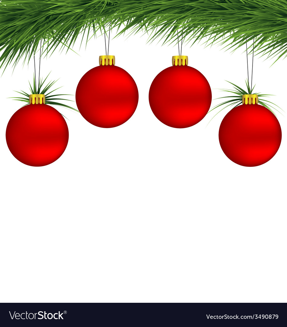 Red christmas balls on pine branch vector | Price: 1 Credit (USD $1)