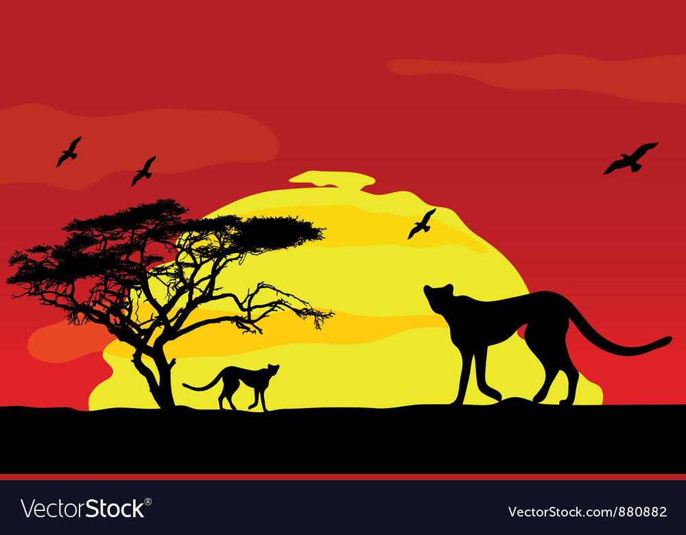 Wild african animals at sunset vector | Price: 1 Credit (USD $1)