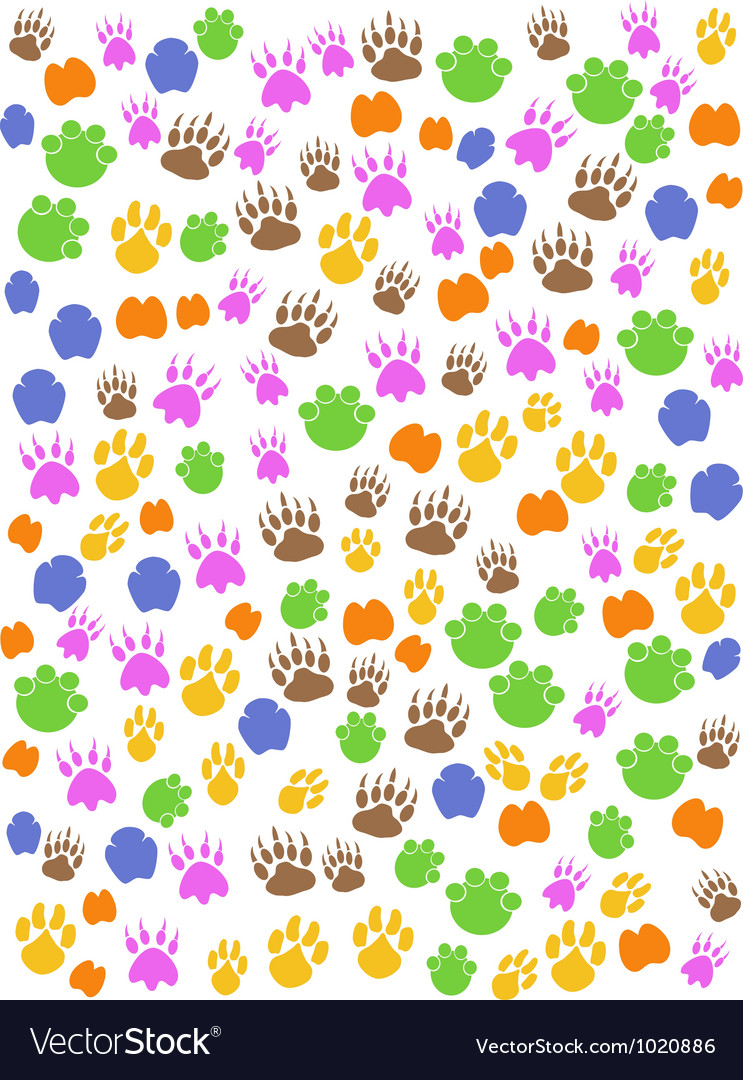 Colorful seamless animals footprint vector | Price: 1 Credit (USD $1)