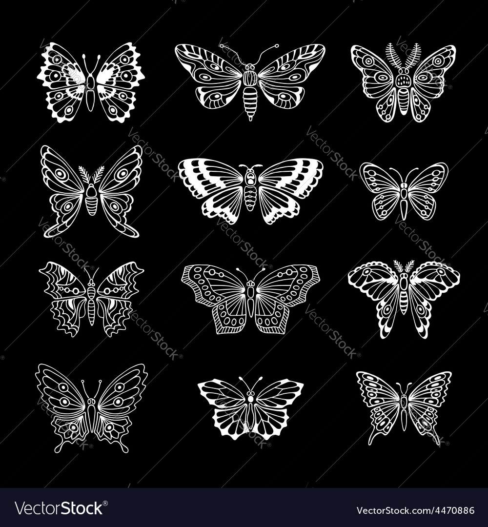 Set of butterflies decorative isolated silhouettes vector