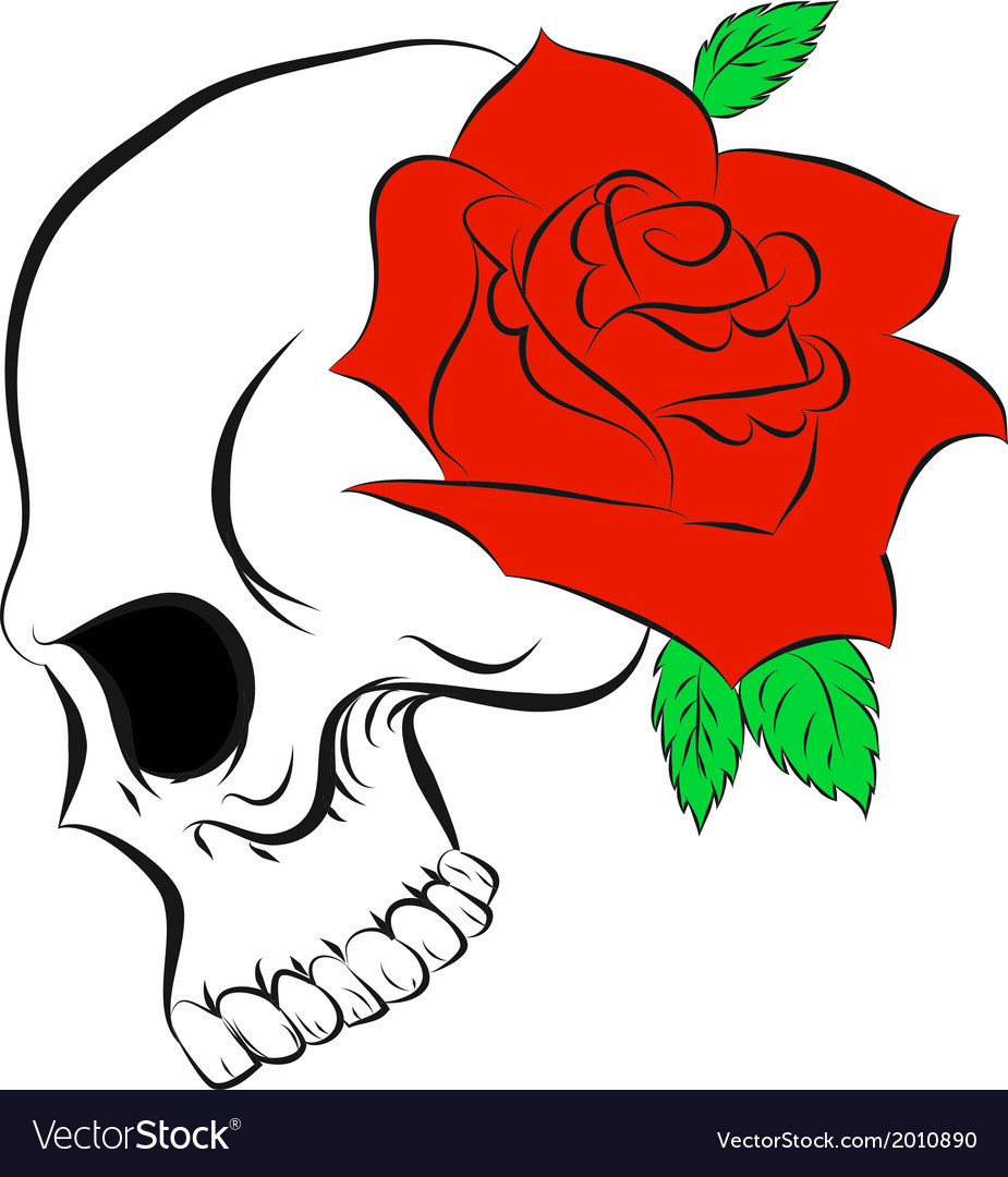 Pirate skull and one rose vector | Price: 1 Credit (USD $1)